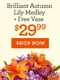 Brilliant Autumn Lily Medley + Free Vase, Just $29.99