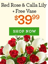 Red Rose & Calla Lily + Free Vase, Just $39.99