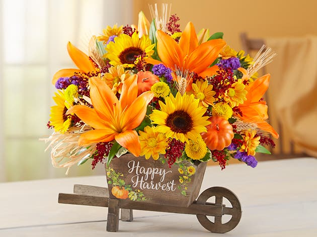 Fall Flowers & Gifts