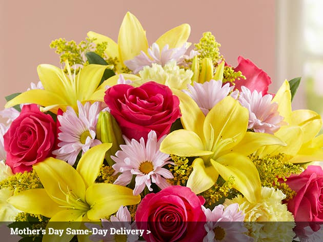 Same Day Flower Delivery - Satisfaction Commitment. Five Star Rated Shopper Approved See Our Ratings & Awards! Order & Delivery Status Sign In Cart. Menu. Excellent much better than Flowers. Many of the blooms were just beginning to open so that the bouquet will last a long time. I also like that you do follow-up. Thank you.