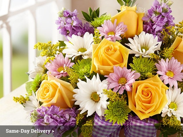 Flowers. Send a gift today with same day flowers! From You Flowers offers florist arranged flower arrangements for delivery today in the USA. Simply place your order before PM in the recipient's time zone and From You Flowers' guarantees the florist arranged same day flowers will arrive in time to celebrate today's special occasion.