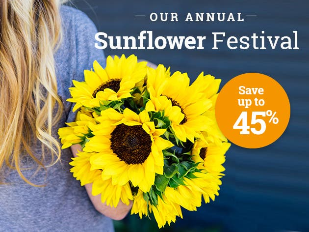 Sunflower Festival - FINAL WEEK!