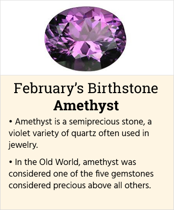 February's Birthstone
