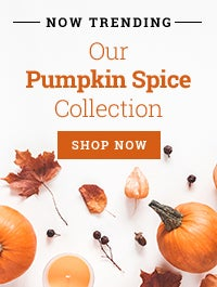 Pumpkin Spice Collection