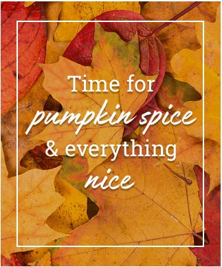 Time For pumpkin spice