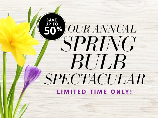 Spring Bulb Spectacular Limited Time Only