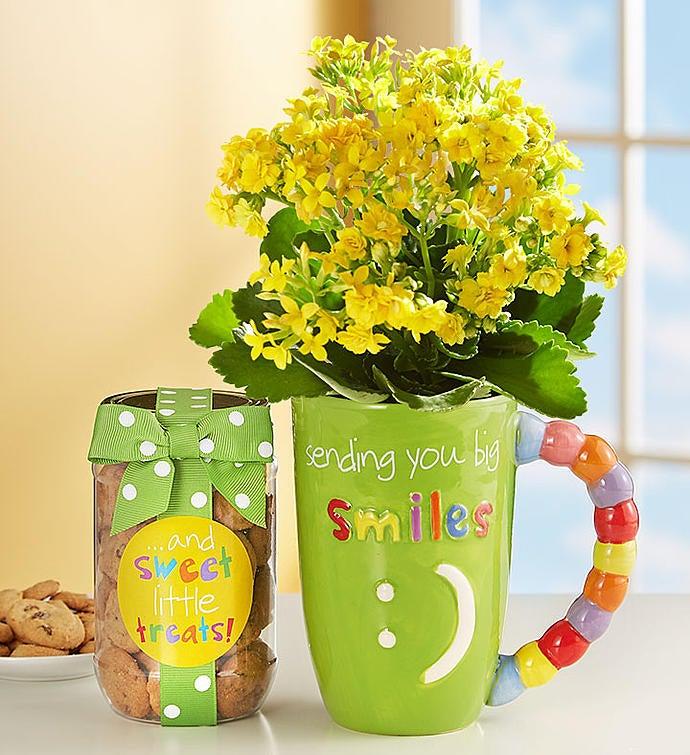 Mugable® Full of Blooms Plant