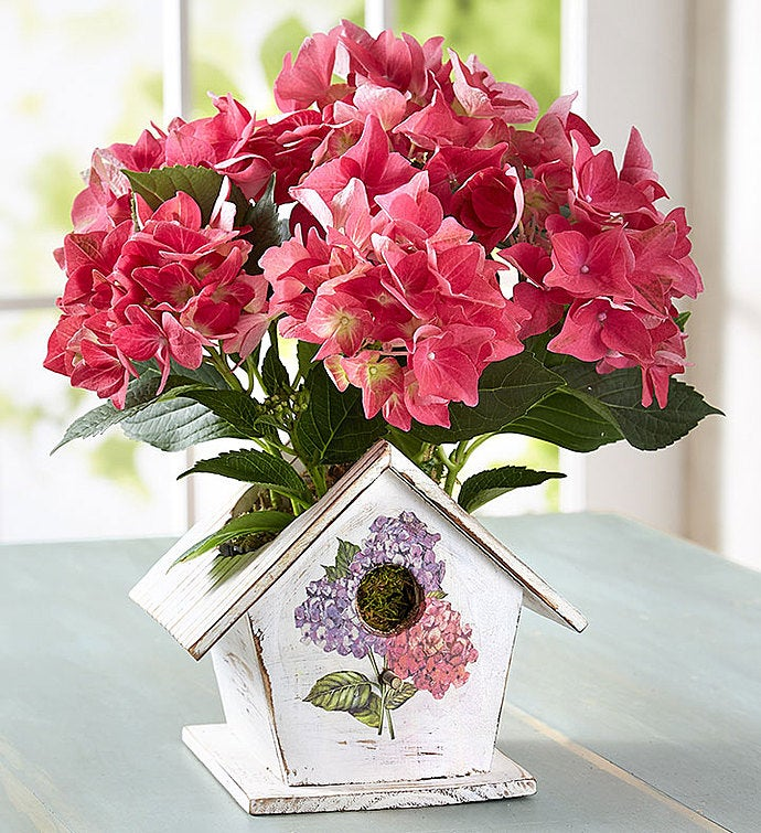 Bird House of Blooms®