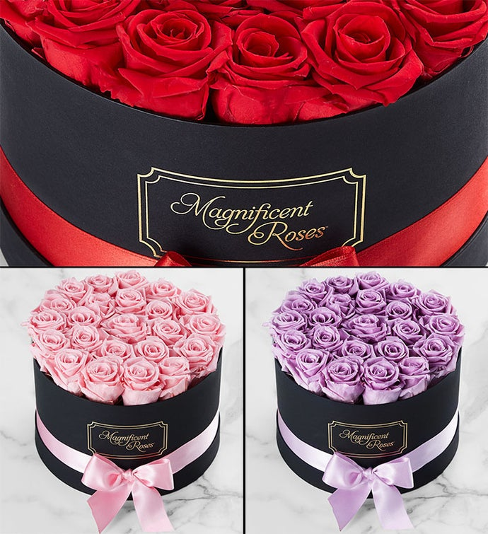 Magnificent Roses™ Preserved Roses