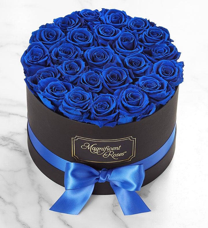 Magnificent Roses® Preserved  Blue Velvet Roses