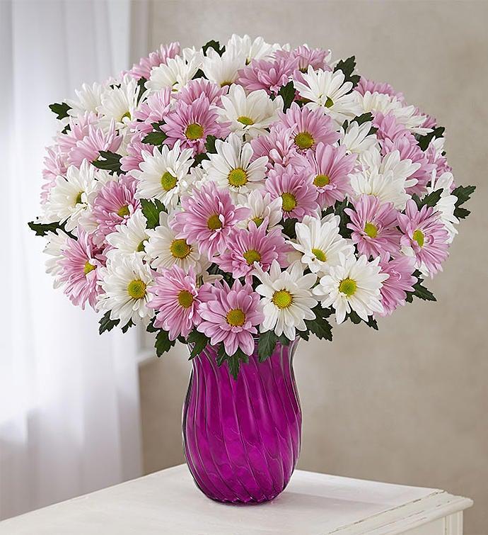 Lovely Daisy Bouquet