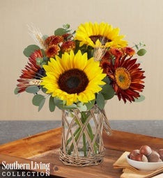 Fall Enchantment by Southern Living®