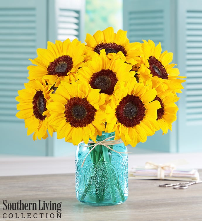 Sunflowers by Southern Living®