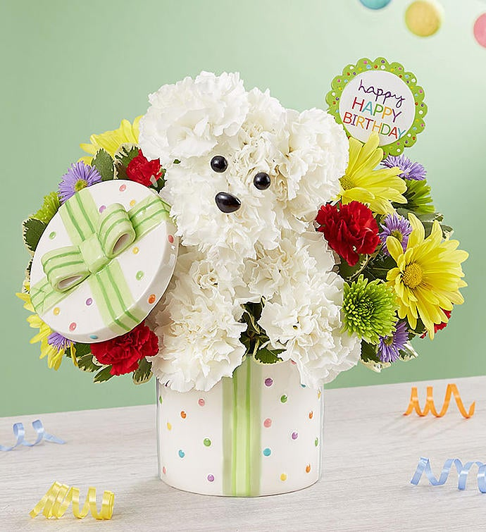 Party PoochTM Happy Birthday Bouquet