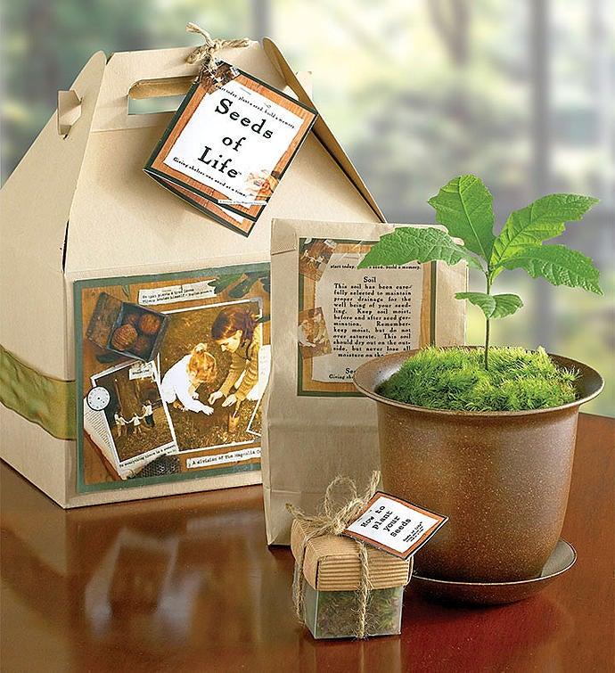 Seeds of Life™ Tree Kit